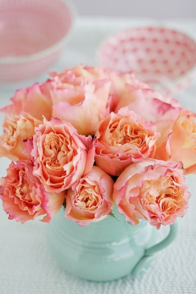 Coral and Tiffany blue- beautiful garden roses and a blue vase