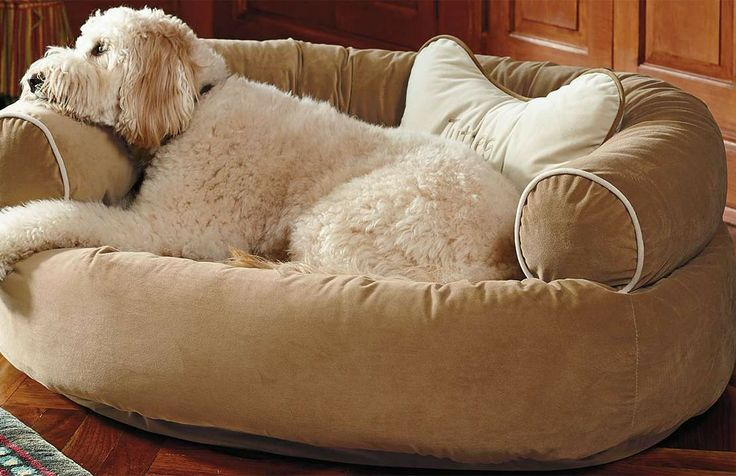 Comfy Couch Pet Bed Cas Dog Beds And Couch
