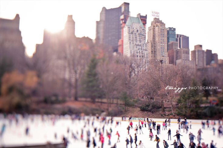 new york stories and tips to recover your lost photos through lightroom, by twiggs photography.: Fotografia Criativa, Art Photography, Travel Photo, Twigg Photography, Criativa De, Art Prints, Central Parks, York Photography, Essex House