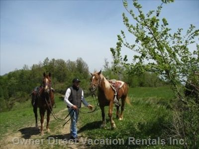 Go horse trekking and discover extraordinary landscapes on Abruzzo