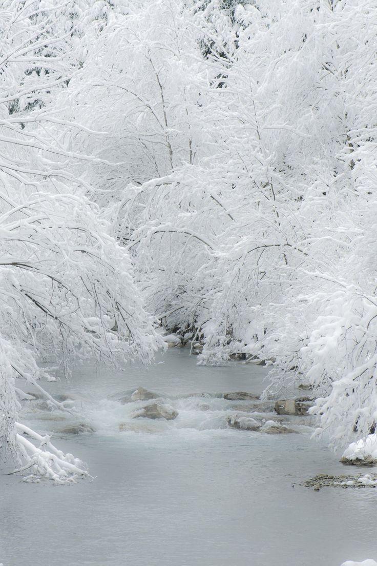 3081_Softness of Winter Schnee und Wasser photography by Françoise Alsaker