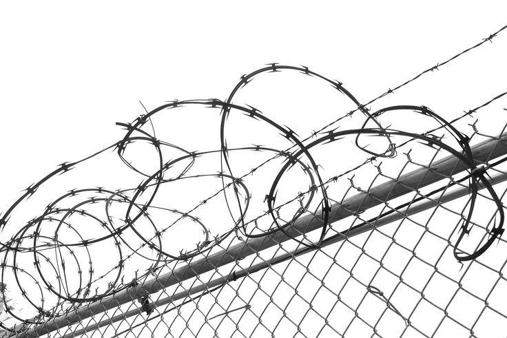 11 best razor wire images on pinterest