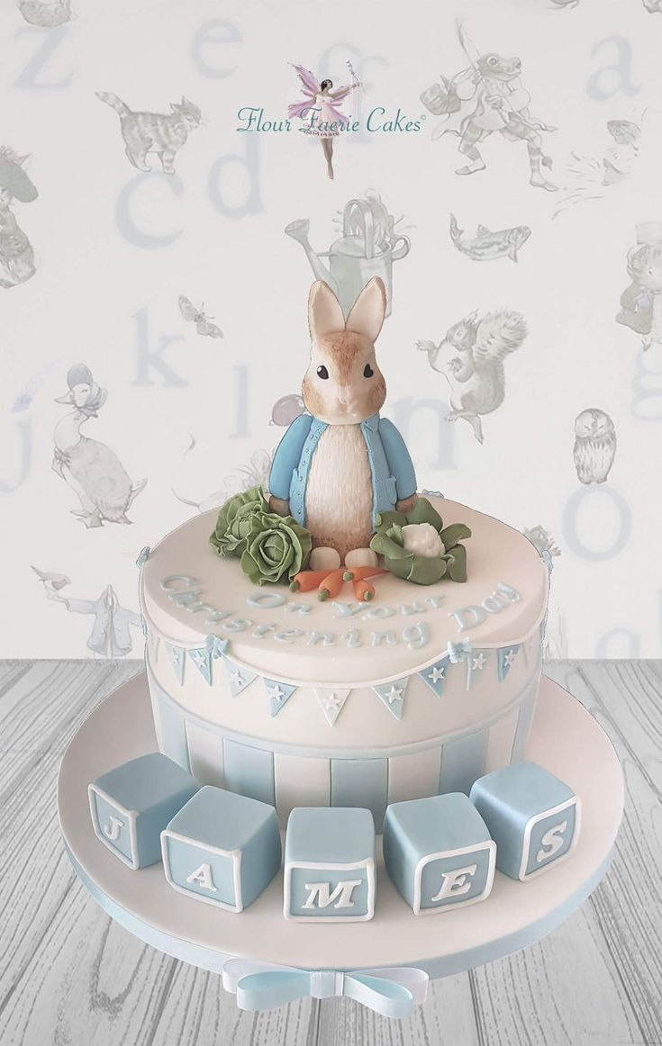 Peter Rabbit Cake on Cake Central