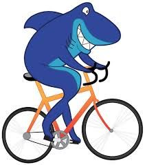10 Best Shark On Bike Images On Pinterest Bicycles Sharks And