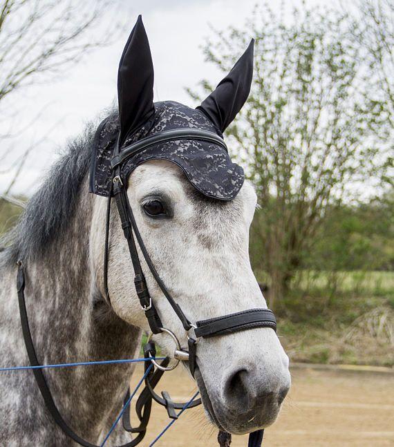 acy flybonnet, flybonnet lace, ear hat horse, pony flyveil, black lace earbonnet, unique horse flybonnet, match fashion, blach fly bonnet, horse pic, dapple grey,