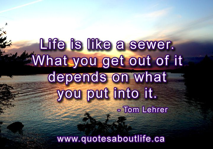 Life Is Like A Sewer. What You Get Out Of It Depends On
