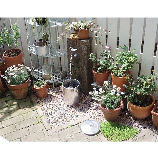 女性で、、のDIY立水栓/DIYフェンス/DIY庭/DIY/おはようございます♡/玄関/入り口…などについてのインテリア実例を紹介。「昨日の続き、庭の様子です。リサイクルで出会ったアルミ製の巨大なパーコレーターが水遣りに便利でした。ジョーロと交互に使うと早く済むので♪」(この写真は 2015-04-19 08:18:55 に共有されました)