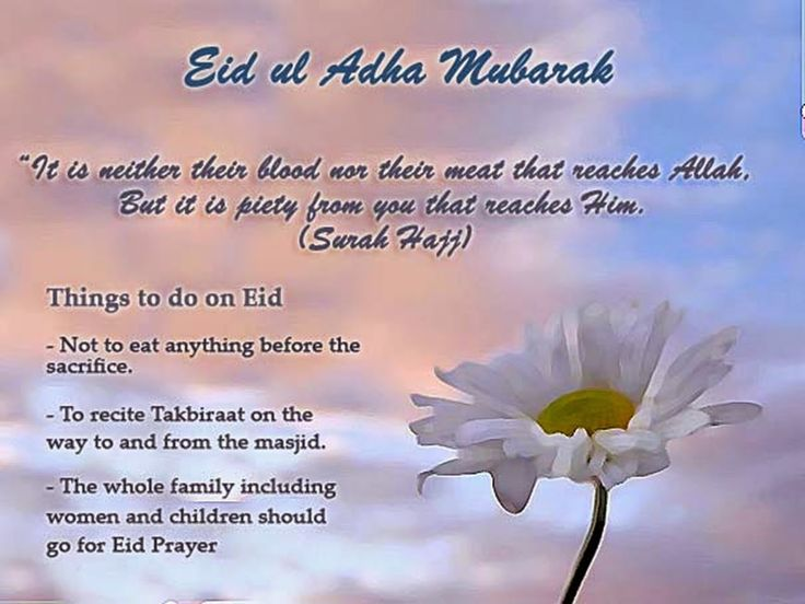 Eid ul adha greetings bangla m4hsunfo
