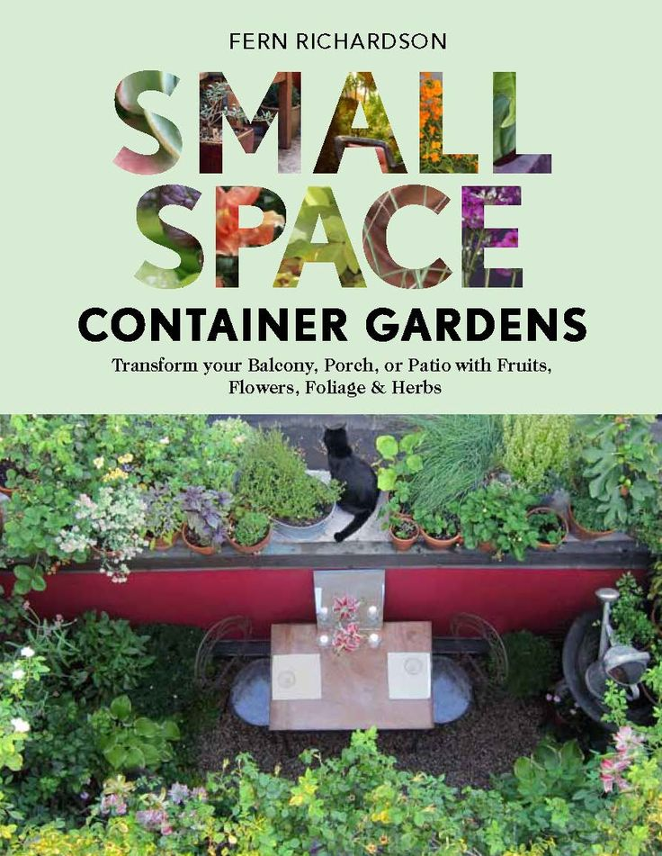 Small-Space Container Gardens -- Lack of space is no excuse for not having an interesting, unusual garden