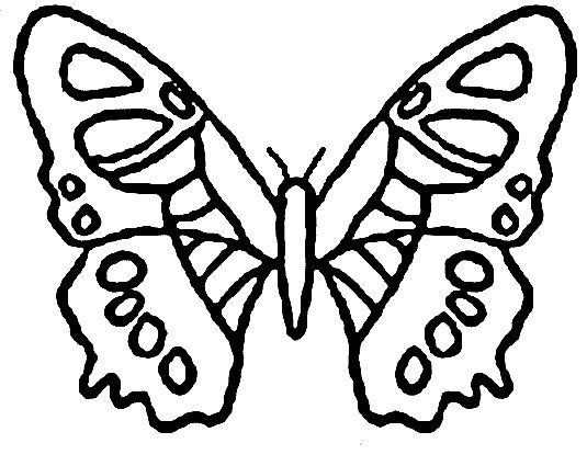 25 best ideas about coloriage papillon sur pinterest - Papillon maternelle ...