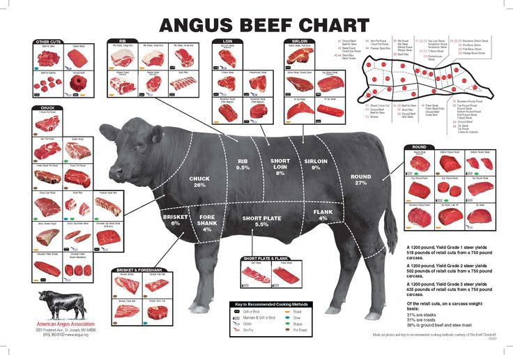 Beef Cuts . . Another good one is http://www.certifiedangusbeef.com/cuts/beef_cuts_poster_4047.pdf