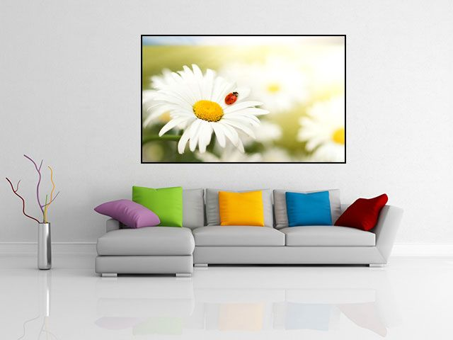 Tablou floare si buburuza - cod L07