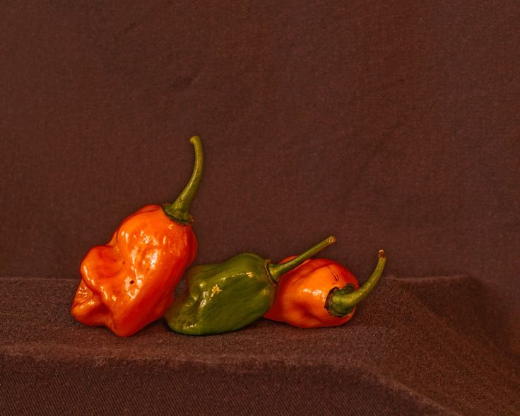 "1st Place Category: Still Life ""Three Peppers"" by MSGT Shawn Helgerson, Fort Leonard Wood"