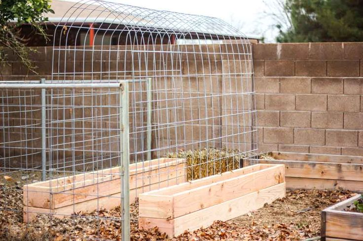 How to make a Trellis & Raised Garden Box Combo   Weed 'Em and Reap