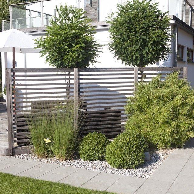 """244 gilla-markeringar, 12 kommentarer - Ting Ute & Inne (@tinguteoinne) på Instagram: """"KlotRobinia, Bambu, Buxbom, Gracillimus...vacker kombo 🌿🌿🌿 #trädgård #garden"""""""
