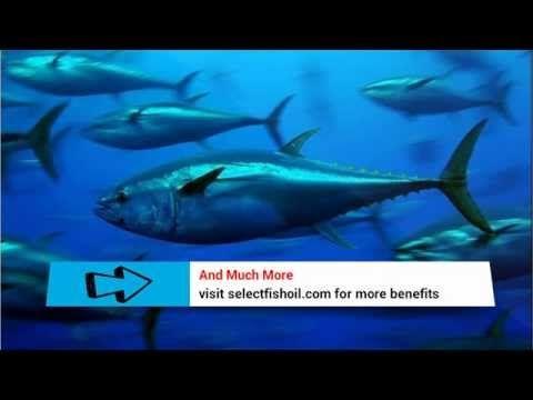 [EPA DHA Fatty Acids] - What Is The Best DHA EPA Omega 3 Fish Oil Ratio? - http://omega3healthbenefits.com/omega-3-for-depression/epa-dha-fatty-acids-what-is-the-best-dha-epa-omega-3-fish-oil-ratio/