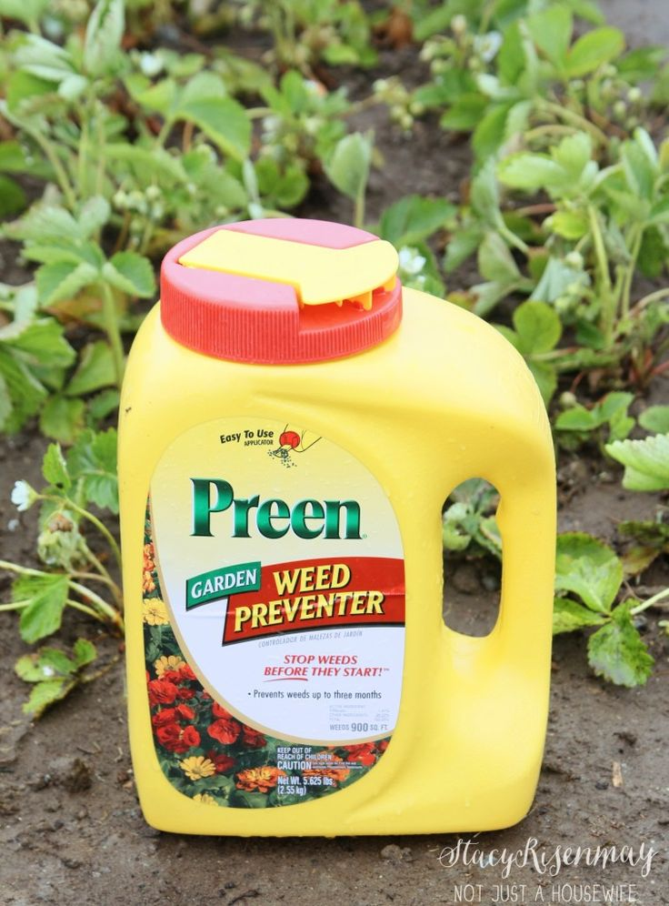 Control weeds - weed preventer?  How have I never heard of this?  I need some ASAP! [Not just a Housewife]