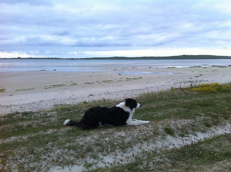 North Uist machair looking towards Vallay Island