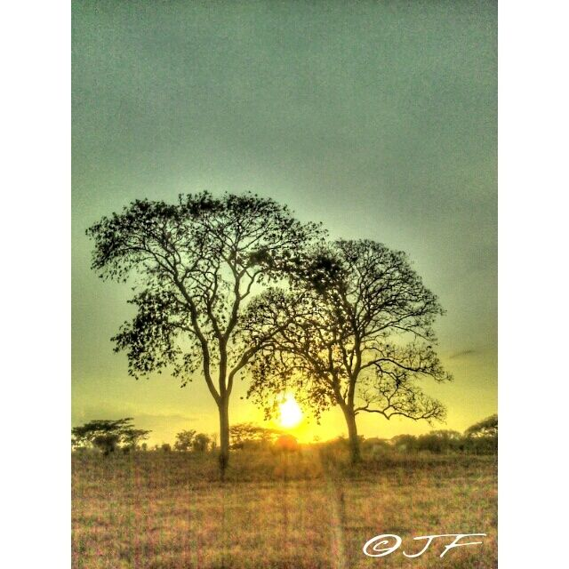 #ATARDECER #FTJG4 05-04-2015 #SUNSET