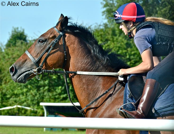 The Winning Post | Raceday photography, previews, news, and ...