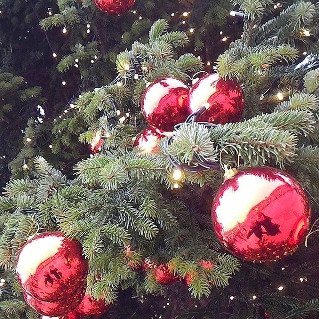 Buona domenica Happy Sunday blogger lifestyle bloggergenova christmastree christmastime fashionaddicthellip