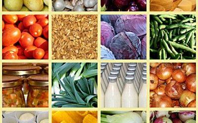 secondo giorno , iniziamo a stimolare il gusto con la cucina biologica e macrobiotica