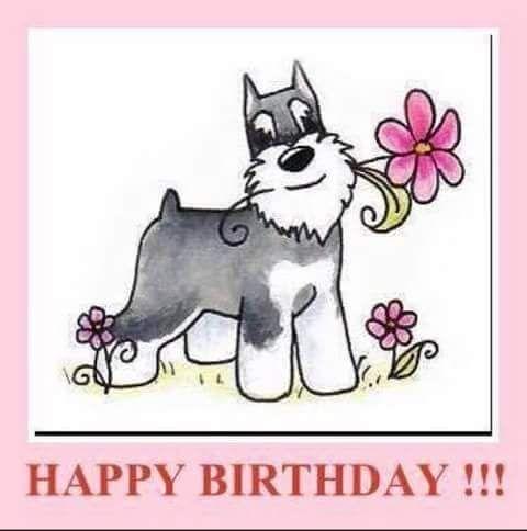 Dog Birthday Meme | ... Birthday Dog on Pinterest | Dog Bandana, Happy Birthday Dog Meme and