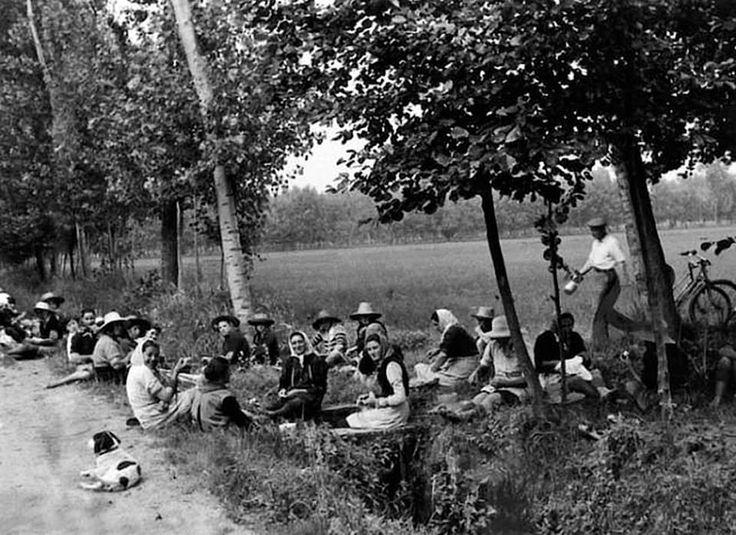Monda del riso, 1950. #riso #Milano #storia #Lomellina #Pavia