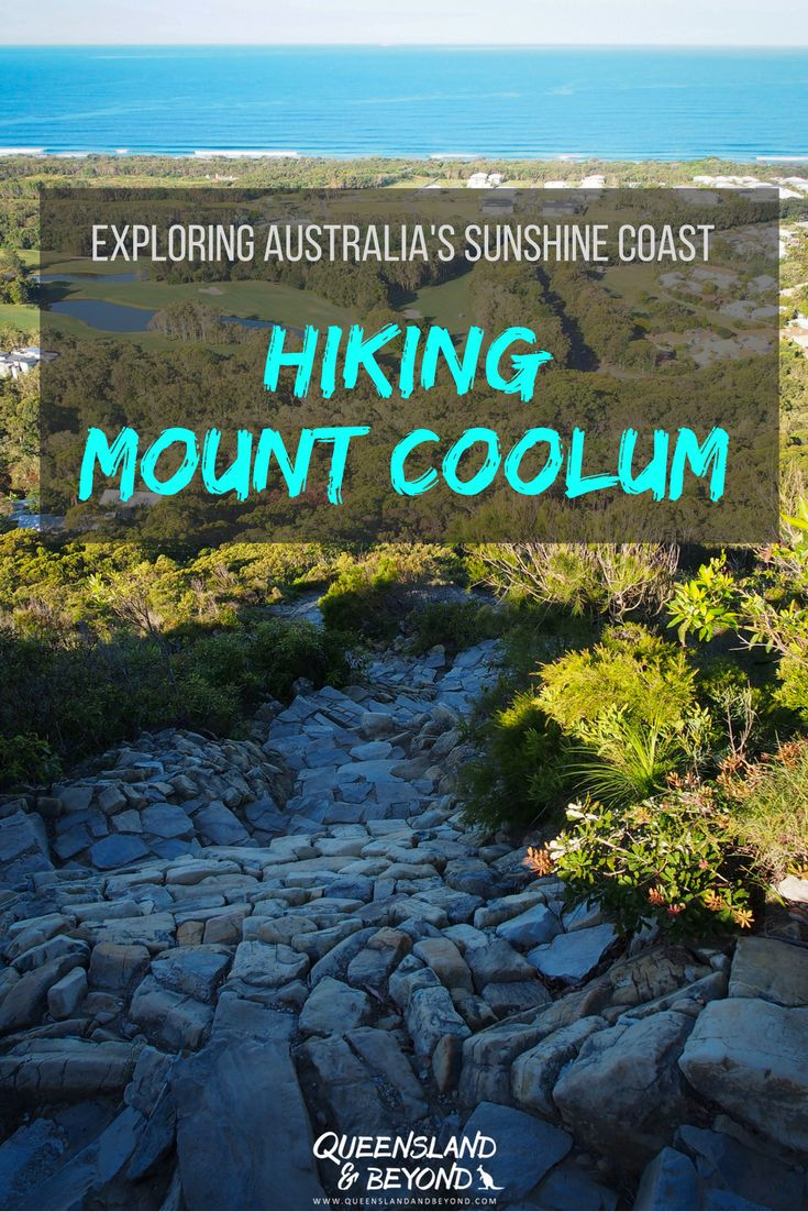 The hike to the Mount Coolum summit offers spectacular views of the Sunshine Coast, and whilst it's a steep climb in some sections, the effort is well worth it! 🌐 Queensland & Beyond #queensland #sunshinecoast #mountcoolum #hiking #walks #lookout
