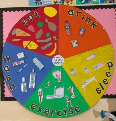 Lovely healthy living display taken from Creative Curriculum through Science                                                                                                                                                                                 More