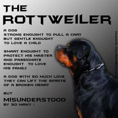 happy Monday rottweiler - Google Search
