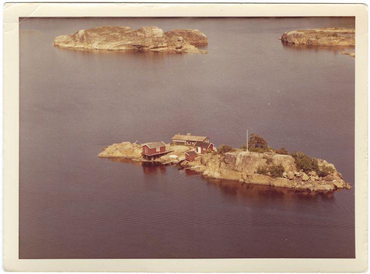 Skitrot, nord for Tossen. Mefjorden   by Vestfoldmuseene   Vestfold Museums