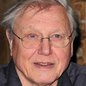 Happy Birthday David Attenborough! He turns 87 today...