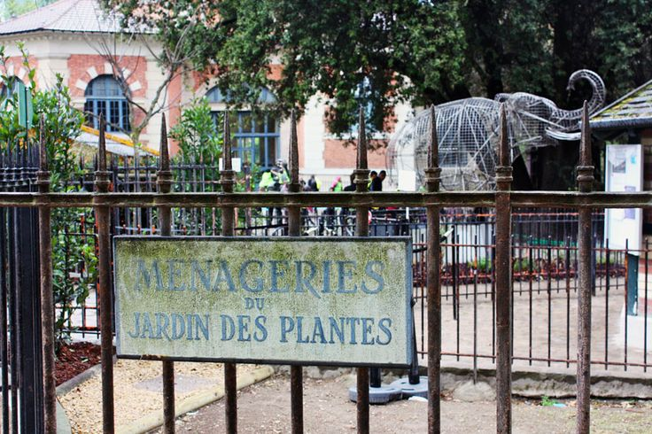 183 best images about jardin des plantes paris on pinterest gardens museums and de paris. Black Bedroom Furniture Sets. Home Design Ideas