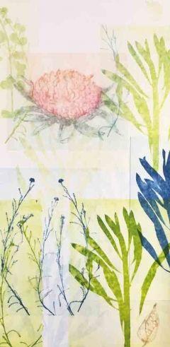Ghostly Pink Waratah, Cotton Lavender & Seed Pod