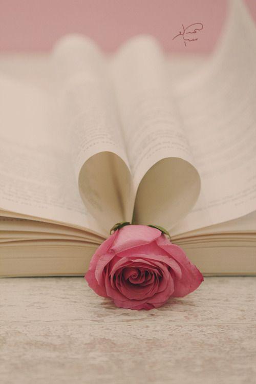 lovely book & rose