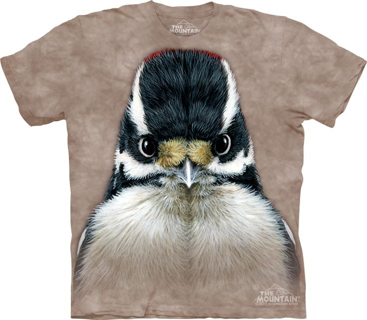 Big Face Downy Woodpecker T-Shirt @Click image to purchase