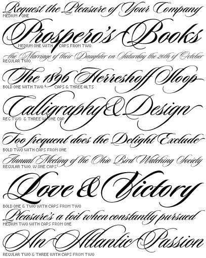 Like this style calligraphy fonts pinterest
