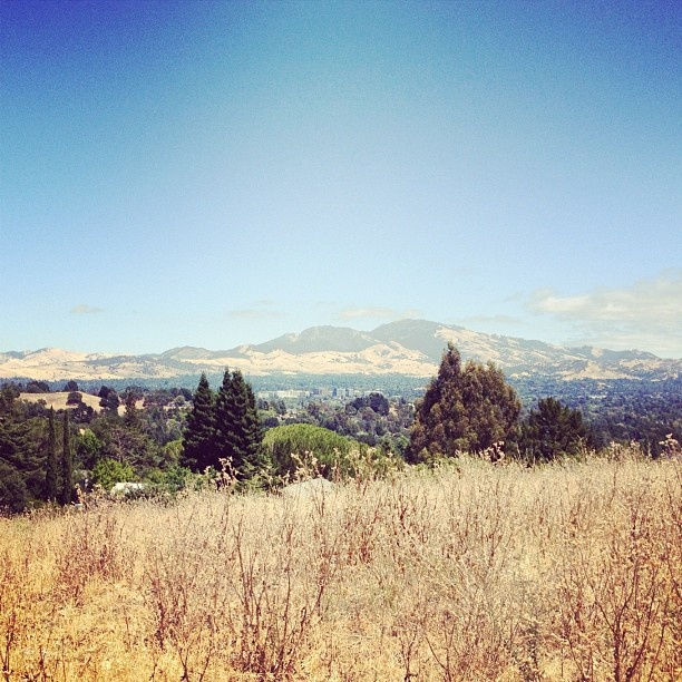 Mt. Diablo, East Bay