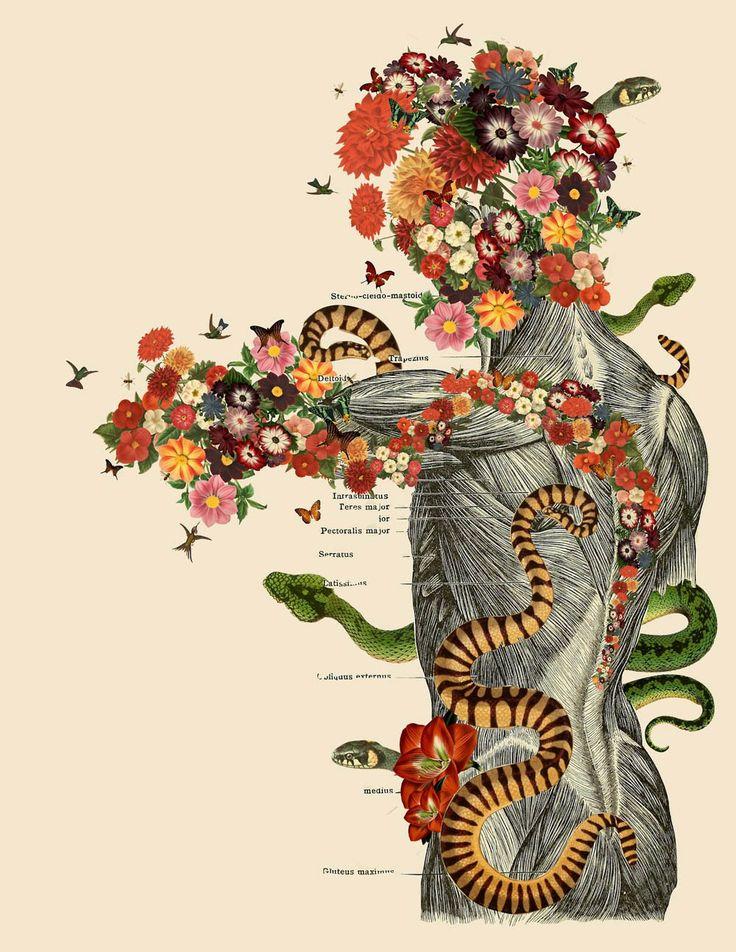 As colagens científicas de Travis Bedel misturam anatomia e botânica, apartir do interior do corpo humano, o artista faz brotar florais fascinantes.