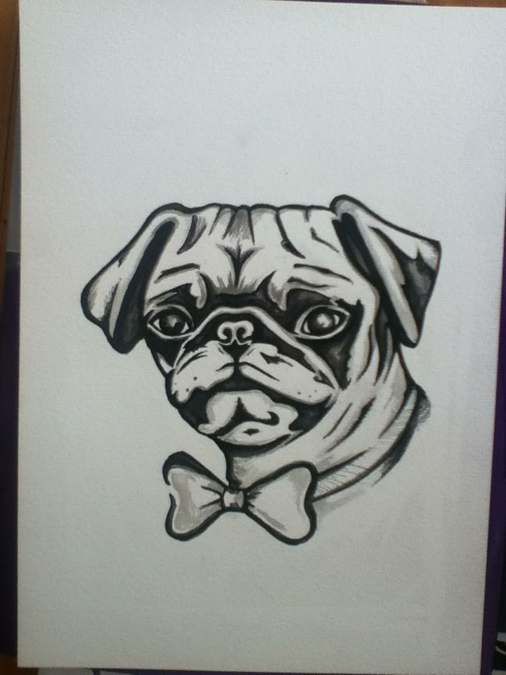Pug In a bow tie. Ink and pencil. All artwork posted is done by me (neonstar) unless stated.