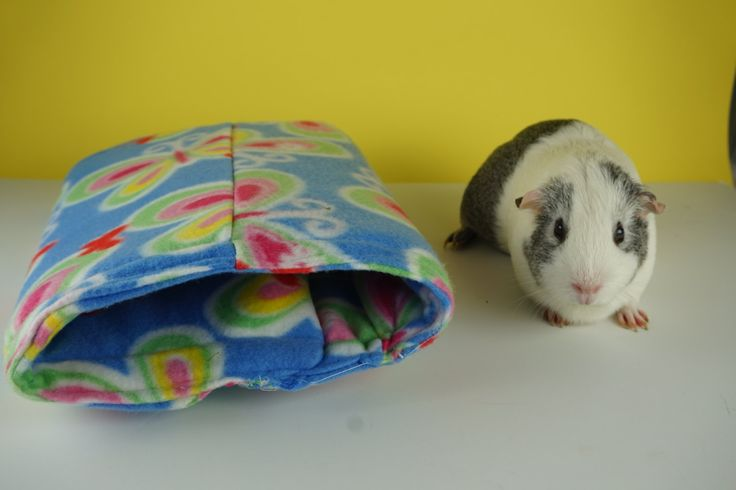 Butterfly fleece guinea pig tunnel, guine pig bed by CreatedbyLauraB on Etsy