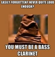 The Music Sorting Hat-So true :( and for Basson *laughs evilly* HORNS RULE