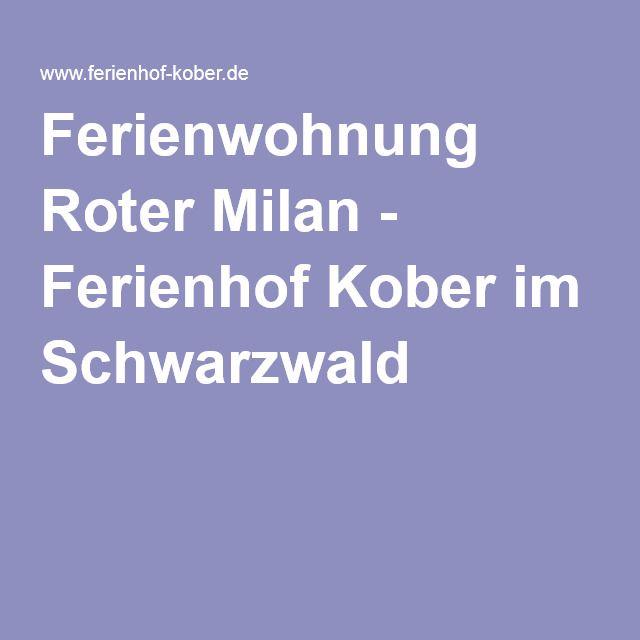 Ferienwohnung Roter Milan - Ferienhof Kober im Schwarzwald