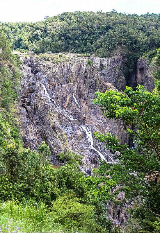 Kuranda Scenic Railway: Barron Falls. Queensland, Australia.This was amazing. The train ride was beautiful.