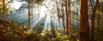 Image result for western australian landscape photography