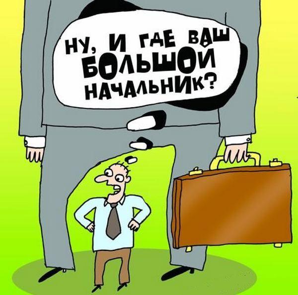 ливийского приколы про директора в картинках легче
