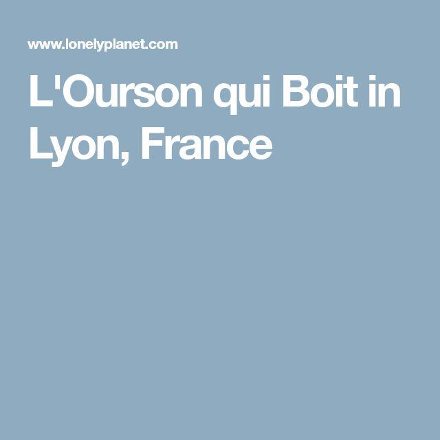 L'Ourson qui Boit in Lyon, France