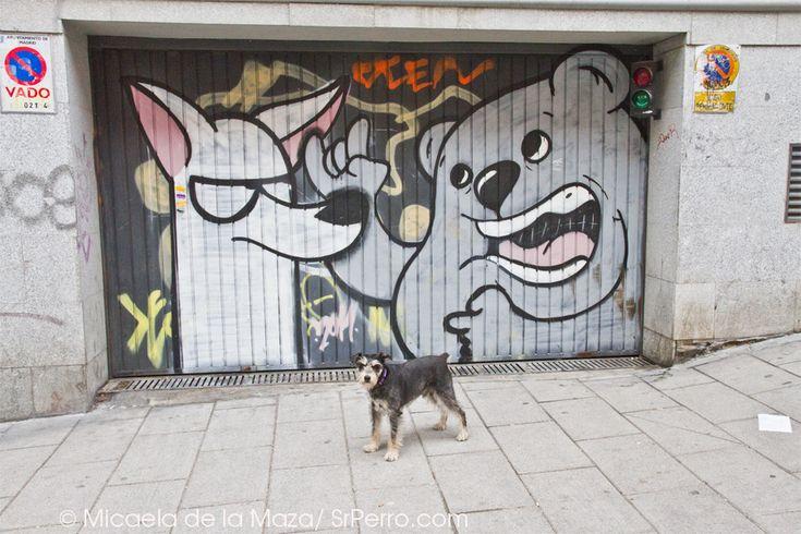 SrPerro y Dingo Perro Mudo  http://www.srperro.com/blog_perro/entrevista-perruna-con-dingo-perro-mudo-los-canes-con-mas-arte-urbano