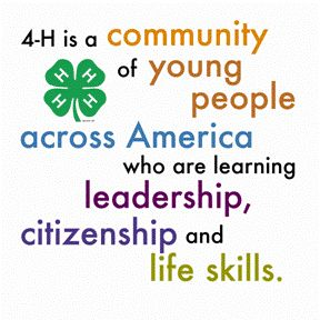 This is the best definition of 4-H I have read